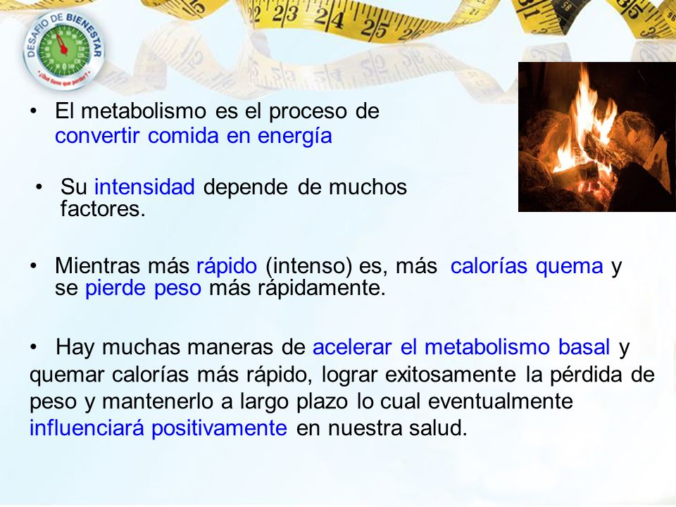 El metabolismo es el proceso de convertir comida en energía