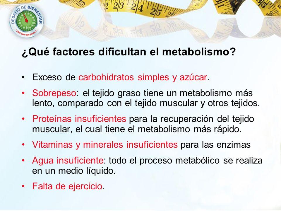 ¿Qué factores dificultan el metabolismo