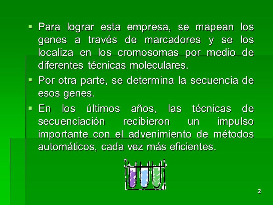 El proyecto genoma humano ppt descargar for En 2003 se completo la secuenciacion del humano