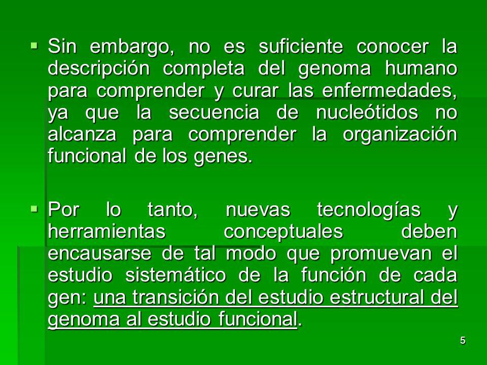 Sin embargo, no es suficiente conocer la descripción completa del genoma humano para comprender y curar las enfermedades, ya que la secuencia de nucleótidos no alcanza para comprender la organización funcional de los genes.