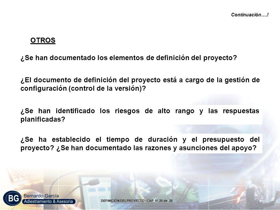 ¿Se han documentado los elementos de definición del proyecto