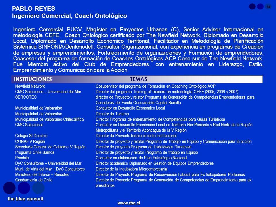 Ingeniero Comercial, Coach Ontológico