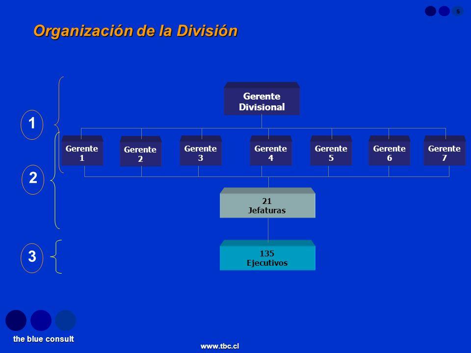 Organización de la División