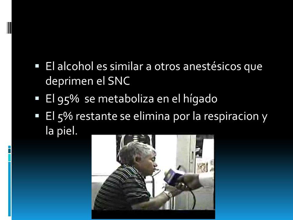 El alcohol es similar a otros anestésicos que deprimen el SNC