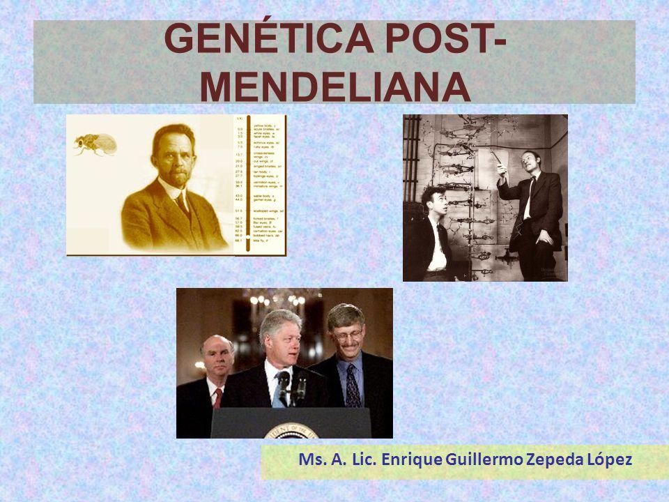 GENÉTICA POST-MENDELIANA Ms. A. Lic. Enrique Guillermo Zepeda López