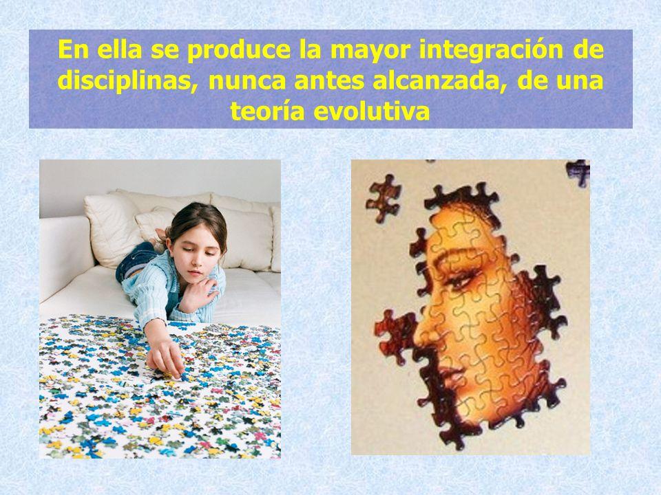 En ella se produce la mayor integración de disciplinas, nunca antes alcanzada, de una teoría evolutiva