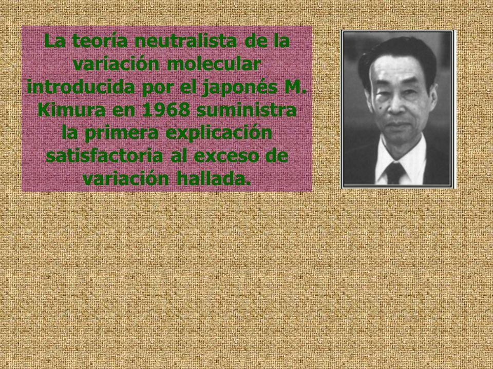 La teoría neutralista de la variación molecular introducida por el japonés M.