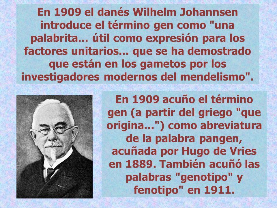 En 1909 el danés Wilhelm Johannsen introduce el término gen como una palabrita... útil como expresión para los factores unitarios... que se ha demostrado que están en los gametos por los investigadores modernos del mendelismo .