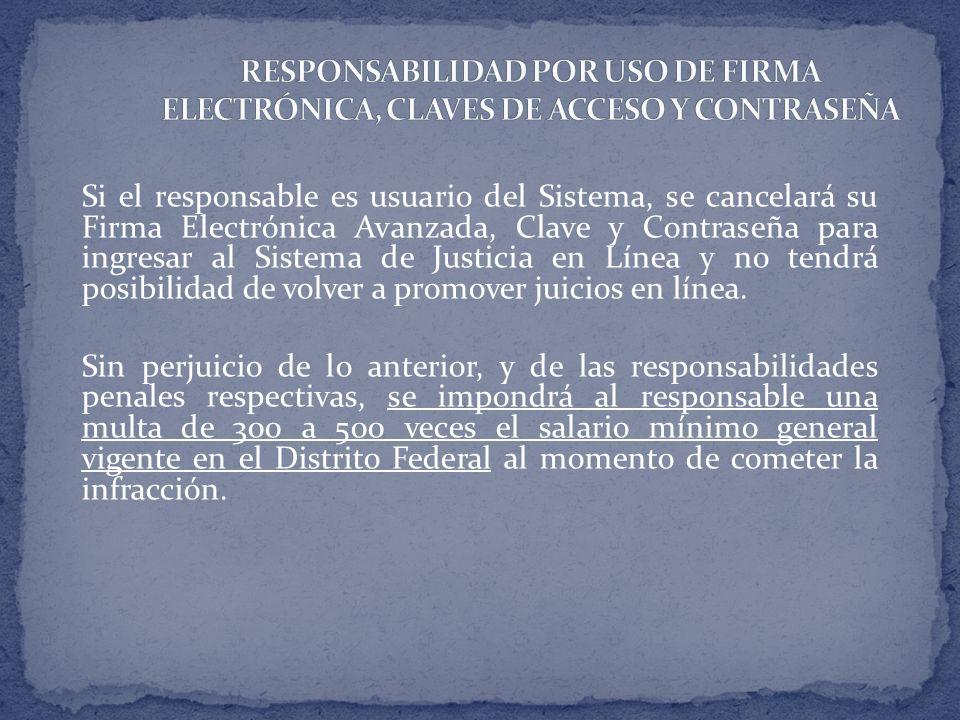 RESPONSABILIDAD POR USO DE FIRMA ELECTRÓNICA, CLAVES DE ACCESO Y CONTRASEÑA