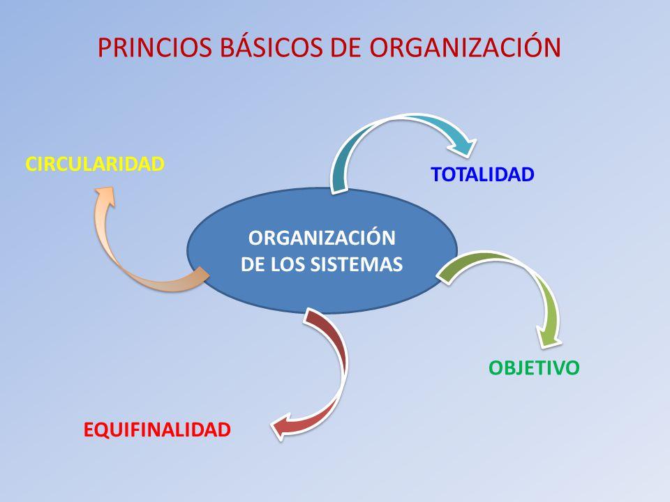 PRINCIOS BÁSICOS DE ORGANIZACIÓN