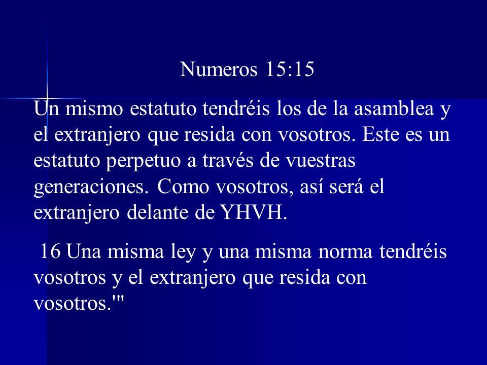 Numeros 15:15