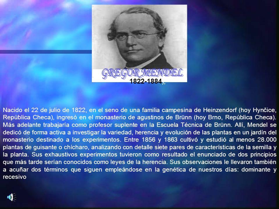 GREGOR MENDEL 1822-1884),