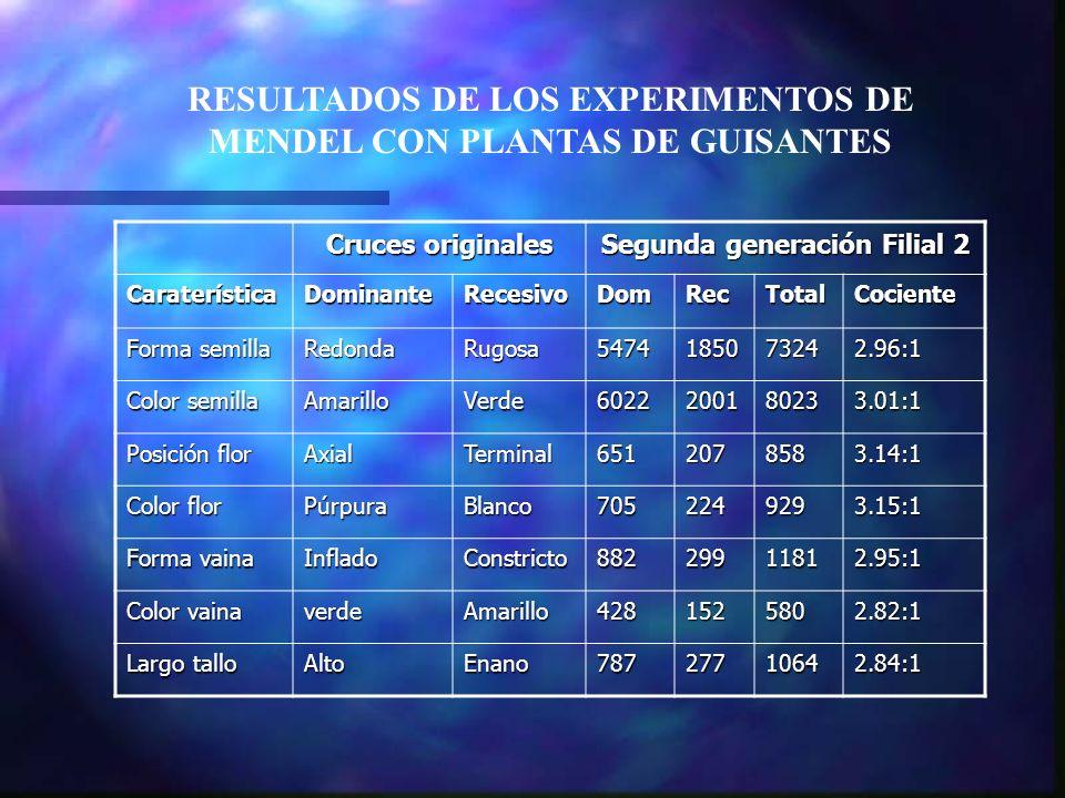 RESULTADOS DE LOS EXPERIMENTOS DE MENDEL CON PLANTAS DE GUISANTES