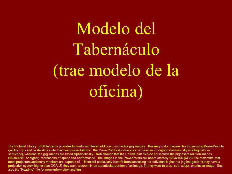 Modelo del Tabernáculo (trae modelo de la oficina)