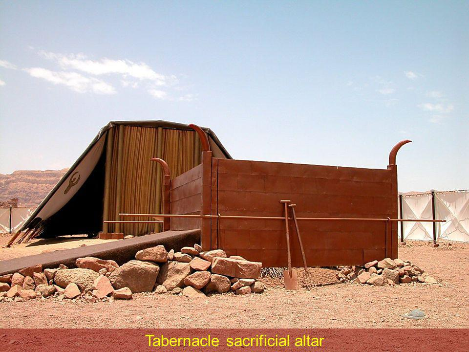 Tabernacle sacrificial altar