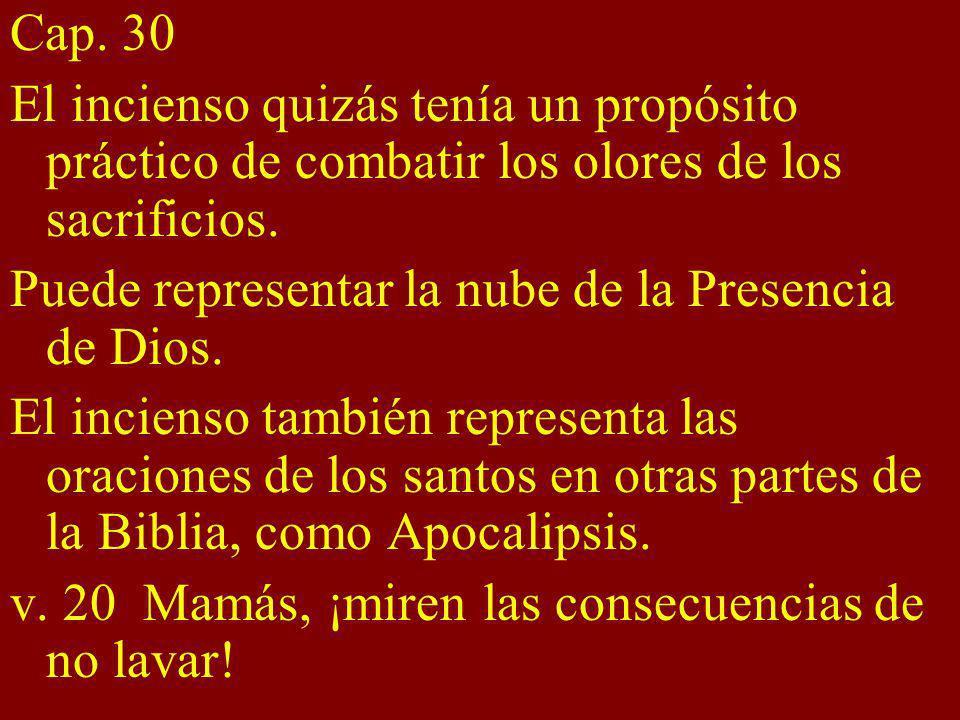 Cap. 30 El incienso quizás tenía un propósito práctico de combatir los olores de los sacrificios. Puede representar la nube de la Presencia de Dios.