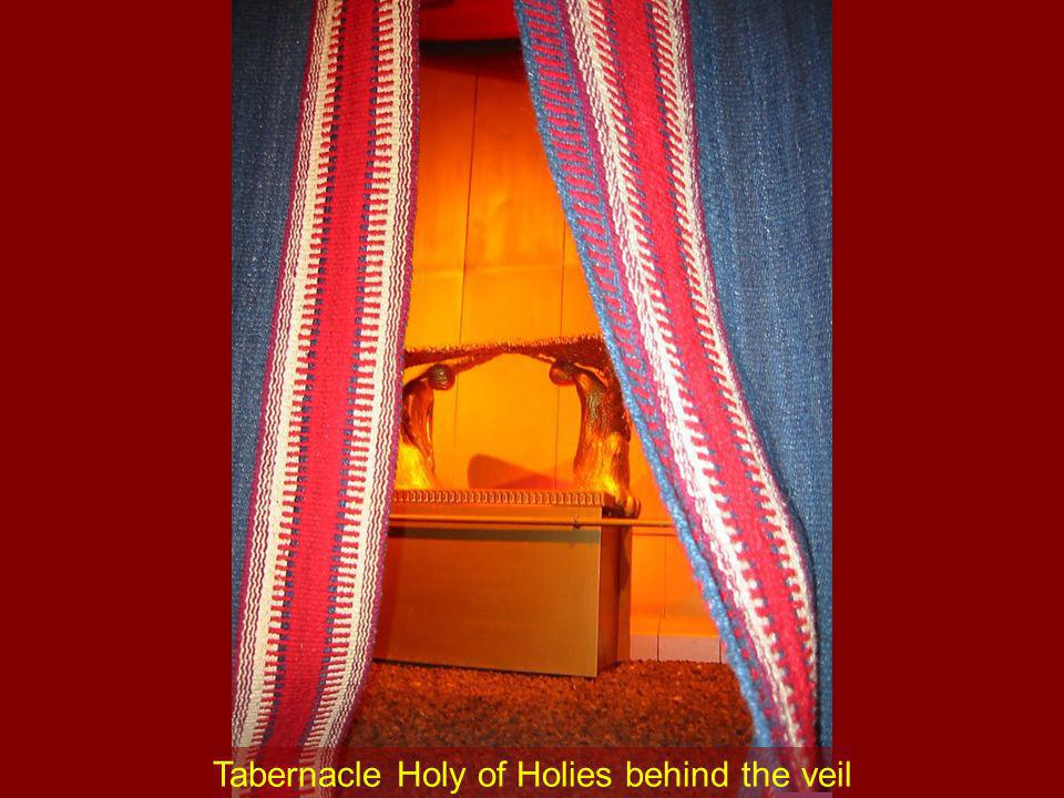 Tabernacle Holy of Holies behind the veil