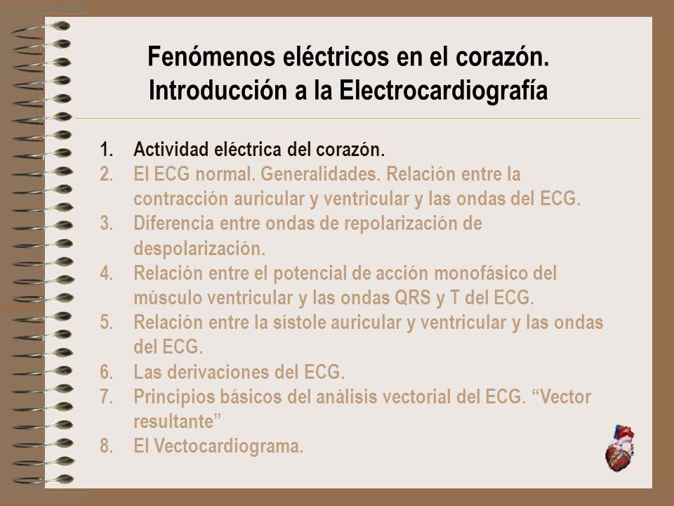 Fenómenos eléctricos en el corazón