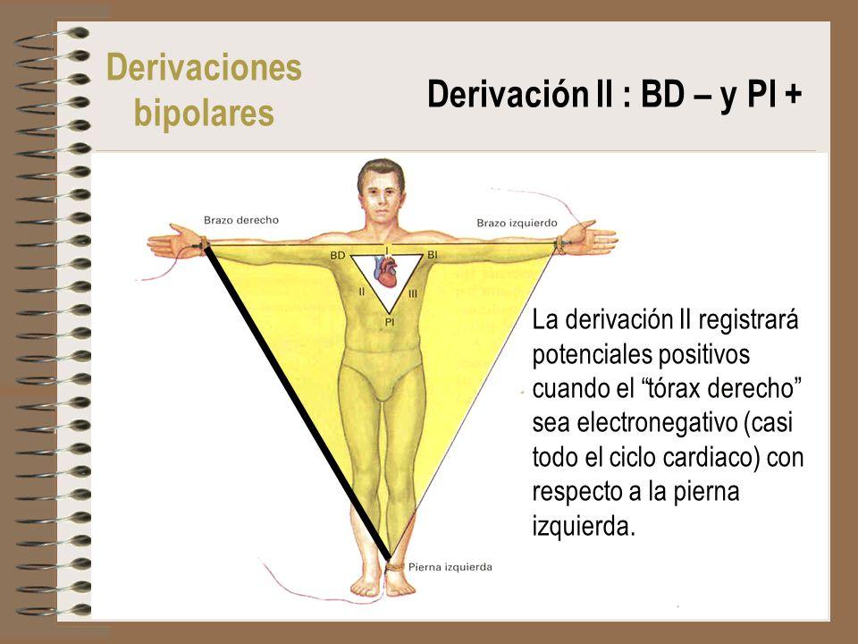Derivación II : BD – y PI +