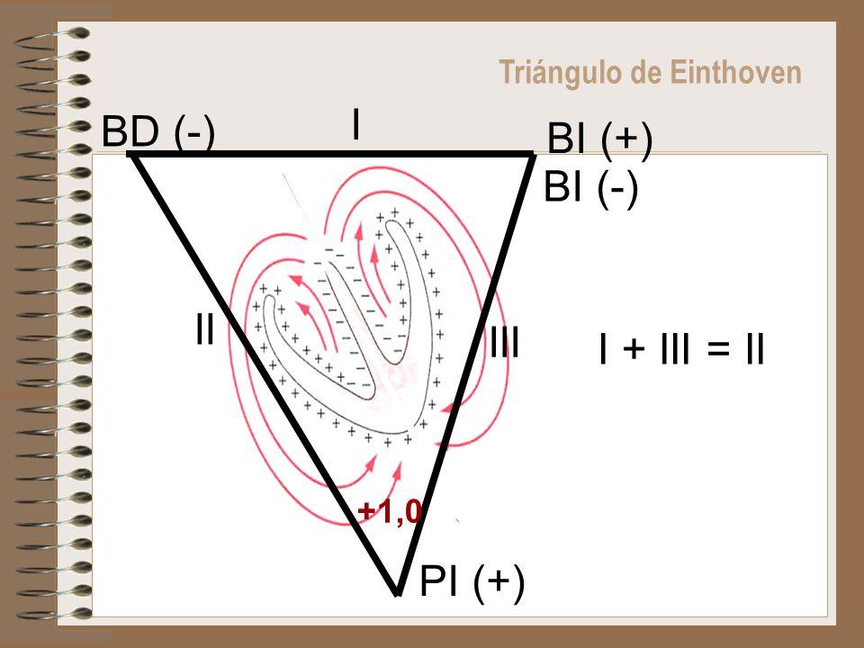I BD (-) BI (+) BI (-) II III I + III = II PI (+)