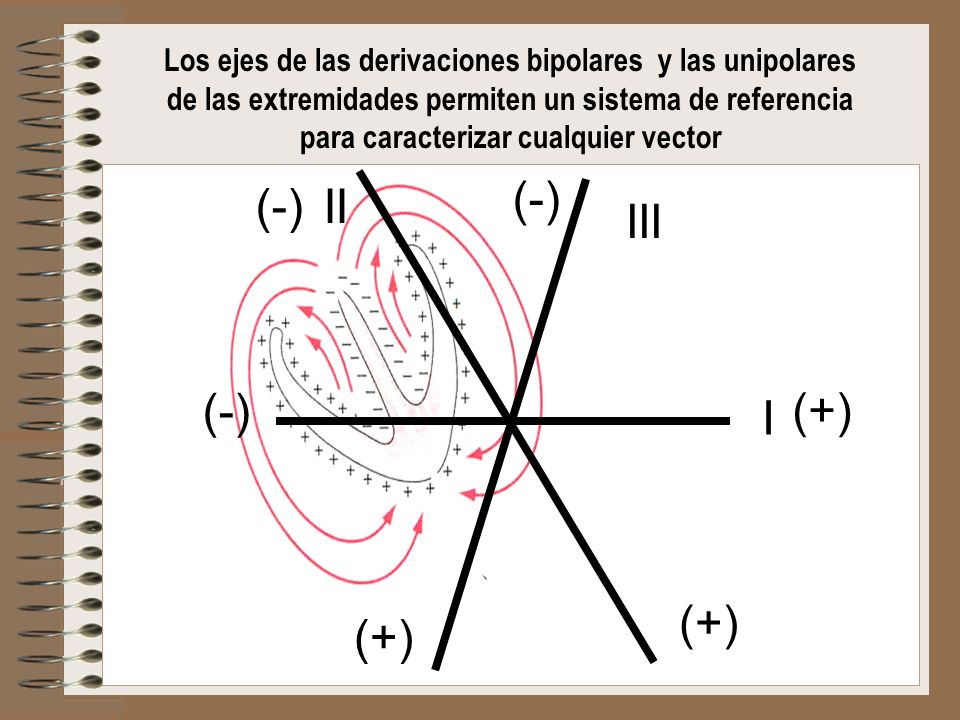 para caracterizar cualquier vector