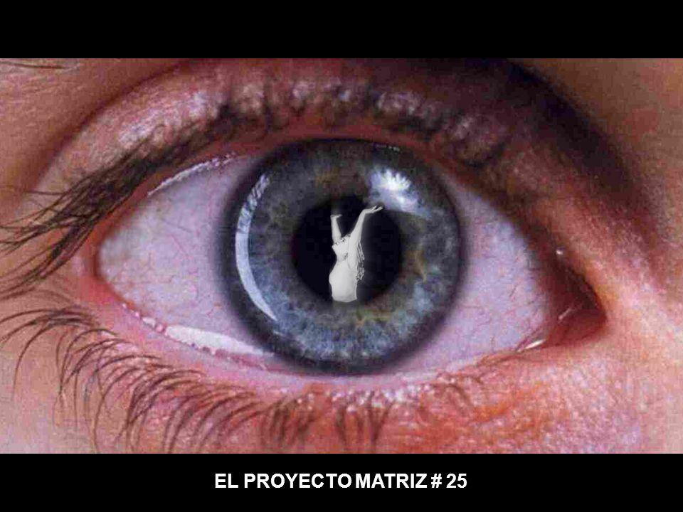 EL PROYECTO MATRIZ # 25