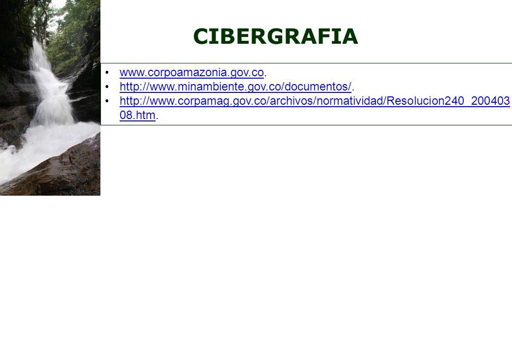 CIBERGRAFIA www.corpoamazonia.gov.co.