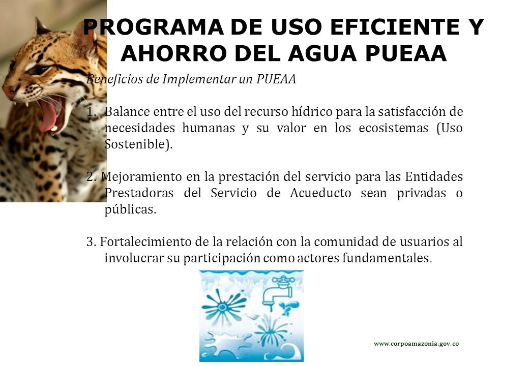 PROGRAMA DE USO EFICIENTE Y AHORRO DEL AGUA PUEAA