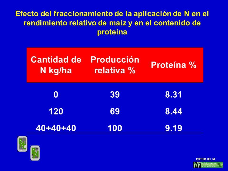 Cantidad de N kg/ha Producción relativa % Proteína % 39 8.31 120 69