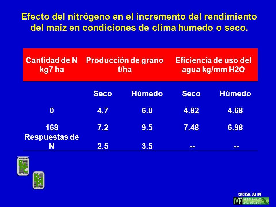 Producción de grano t/ha Eficiencia de uso del agua kg/mm H2O