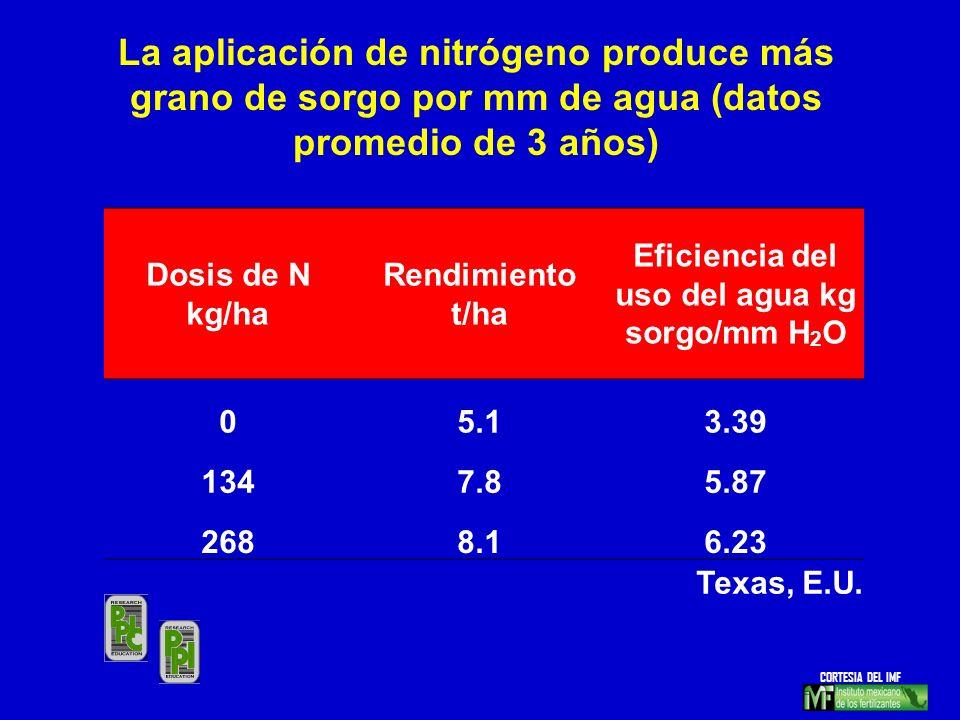 Eficiencia del uso del agua kg sorgo/mm H2O