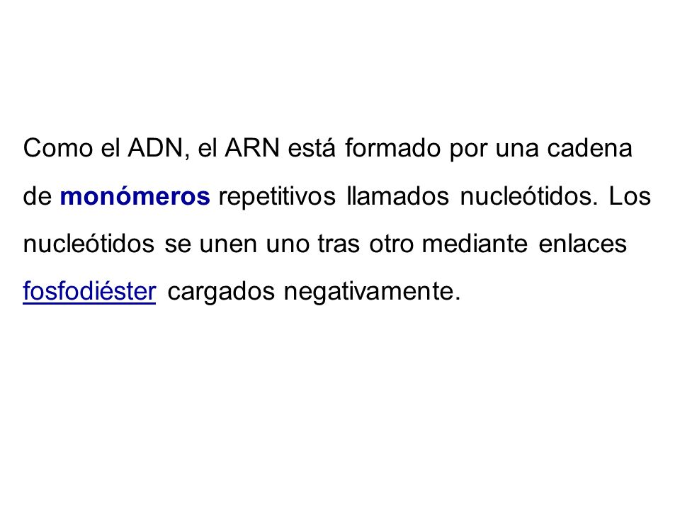 Como el ADN, el ARN está formado por una cadena de monómeros repetitivos llamados nucleótidos.
