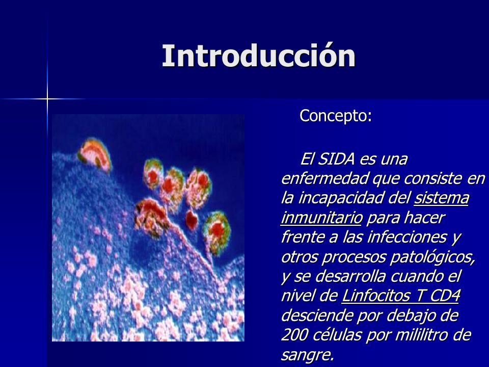 Introducción Concepto: