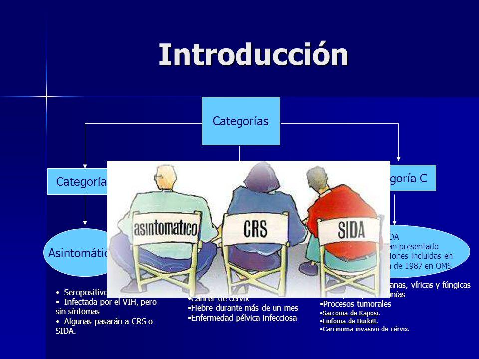 Introducción Categorías Categoría B Categoría C Categoría A