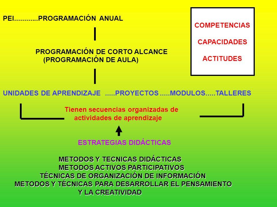 COMPETENCIAS CAPACIDADES. ACTITUDES. PEI............PROGRAMACIÓN ANUAL. PROGRAMACIÓN DE CORTO ALCANCE.