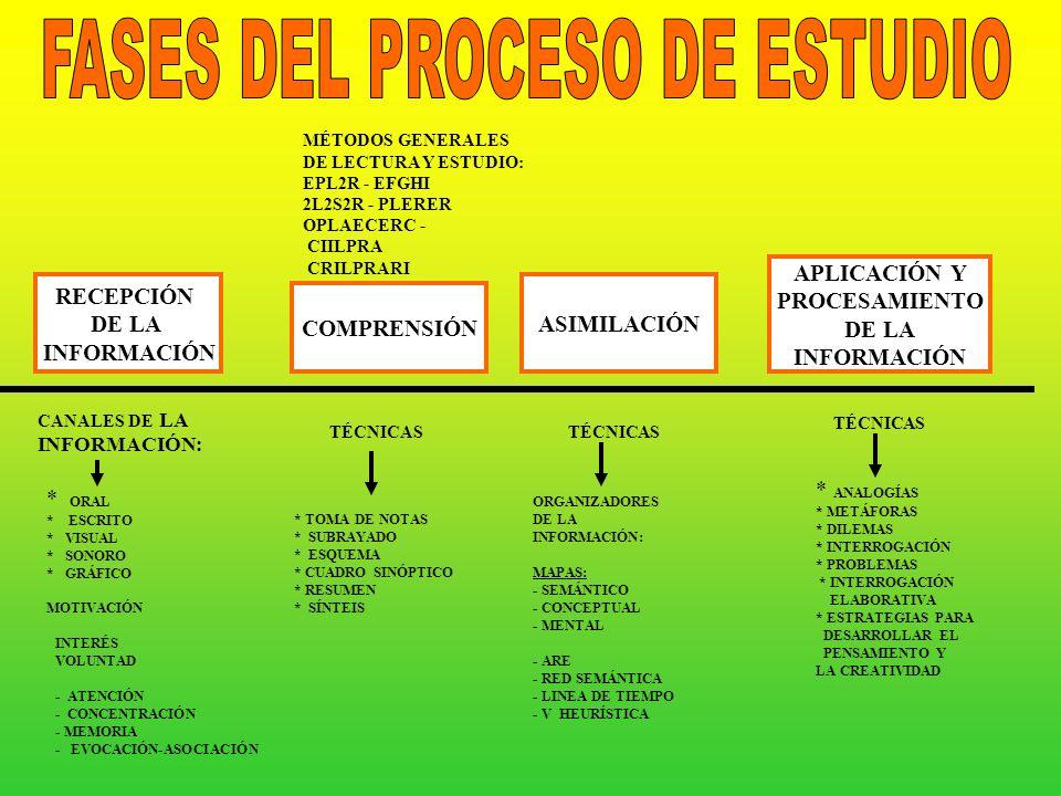 FASES DEL PROCESO DE ESTUDIO