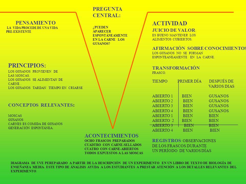 ACTIVIDAD PRINCIPIOS: PREGUNTA CENTRAL: PENSAMIENTO ACONTECIMIENTOS