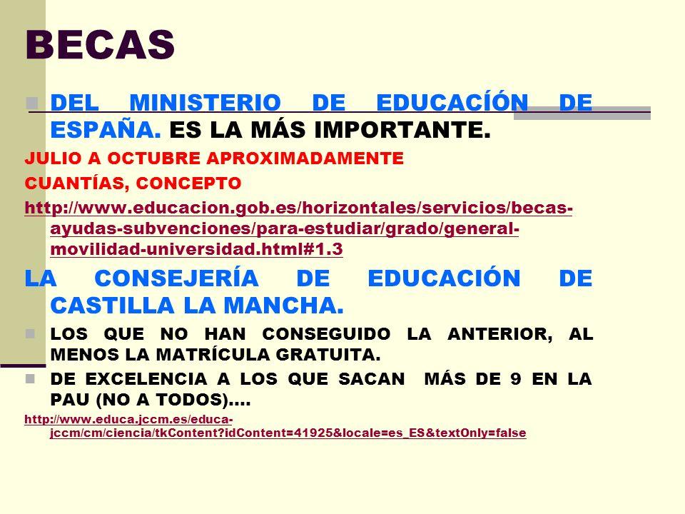 BECAS DEL MINISTERIO DE EDUCACÍÓN DE ESPAÑA. ES LA MÁS IMPORTANTE.