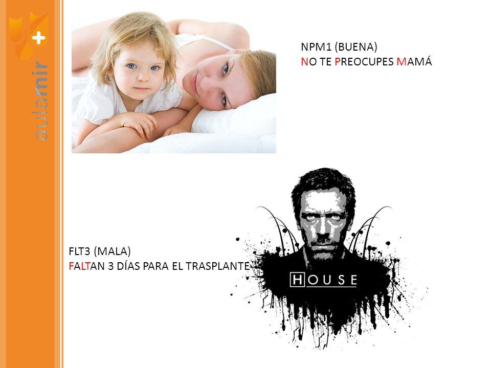 NPM1 (BUENA) NO TE PREOCUPES MAMÁ FLT3 (MALA) FALTAN 3 DÍAS PARA EL TRASPLANTE