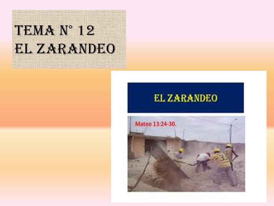 Tema N° 12 EL ZARANDEO