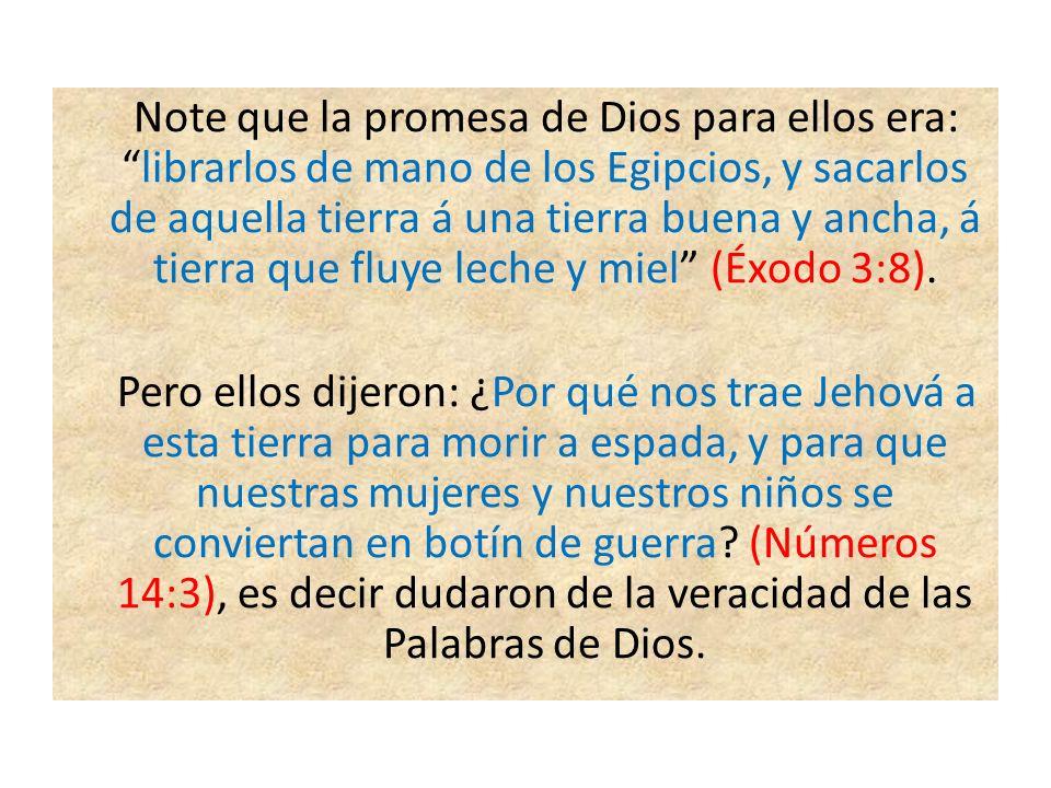Note que la promesa de Dios para ellos era: librarlos de mano de los Egipcios, y sacarlos de aquella tierra á una tierra buena y ancha, á tierra que fluye leche y miel (Éxodo 3:8).