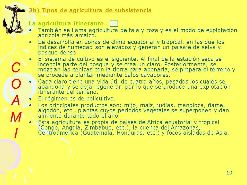 C O A M I 3b) Tipos de agricultura de subsistencia