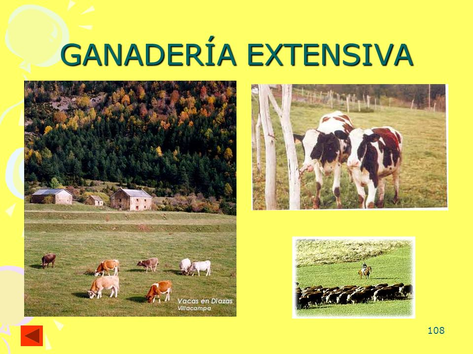 GANADERÍA EXTENSIVA