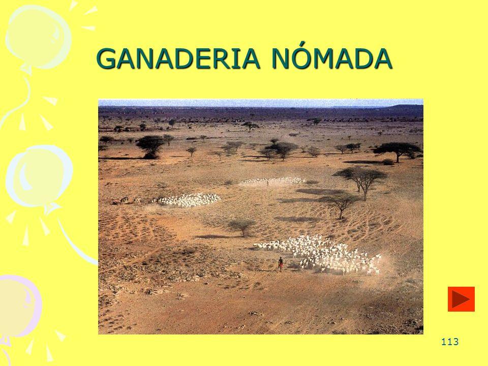 GANADERIA NÓMADA