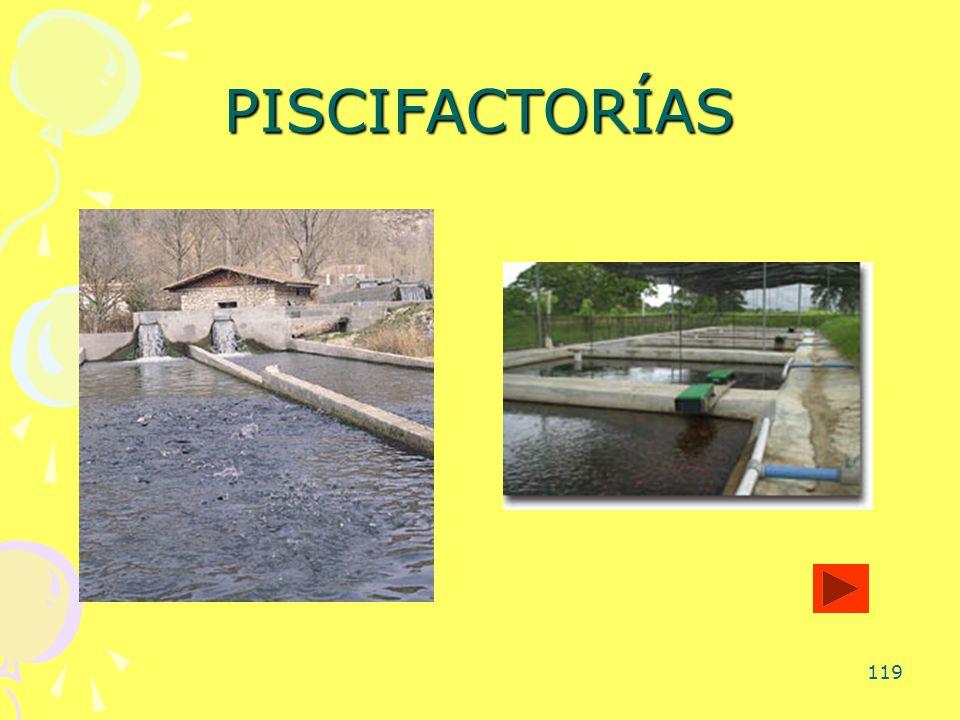 PISCIFACTORÍAS