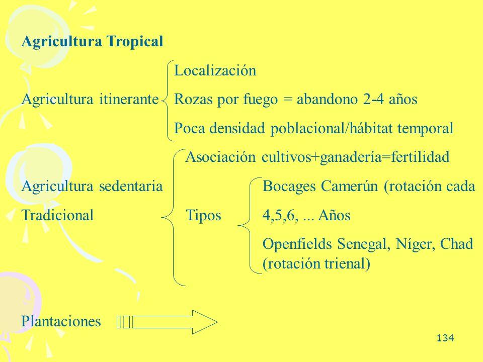 Agricultura Tropical Localización. Agricultura itinerante Rozas por fuego = abandono 2-4 años. Poca densidad poblacional/hábitat temporal.