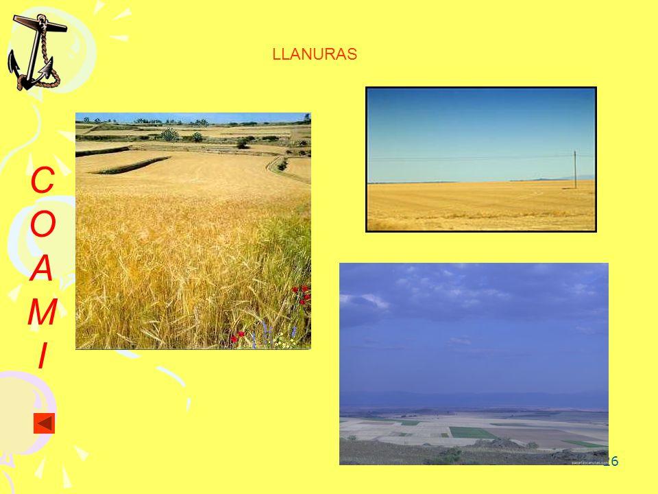 LLANURAS C O A M I