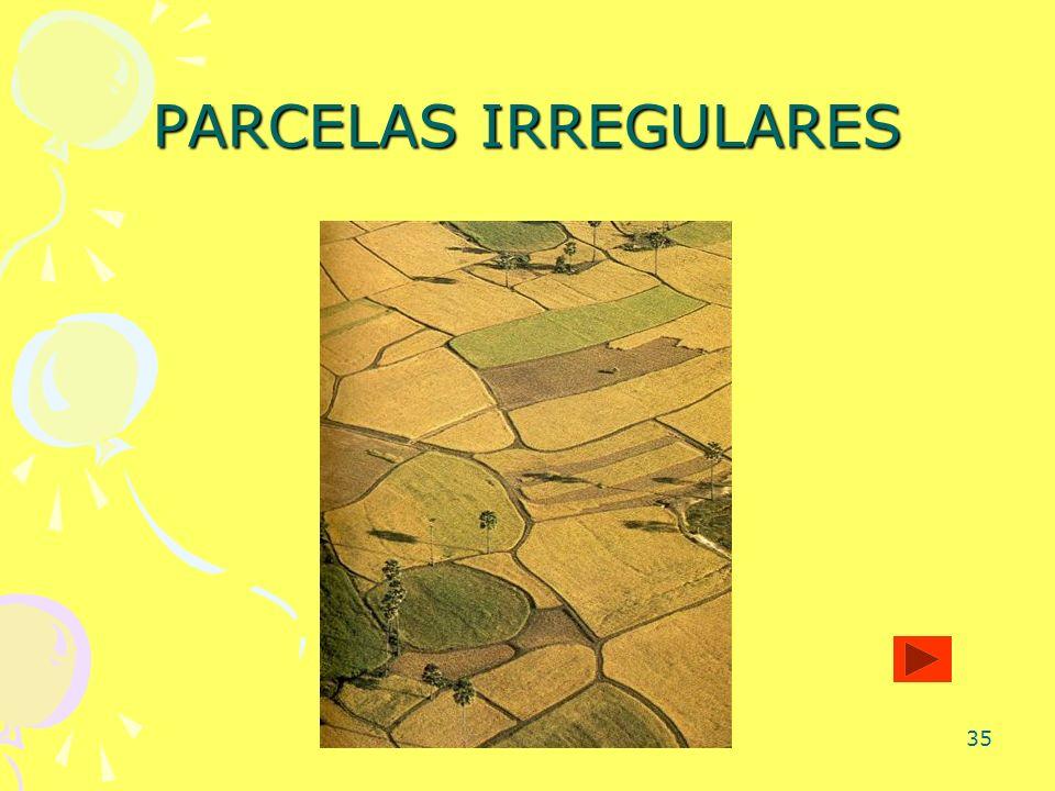 PARCELAS IRREGULARES