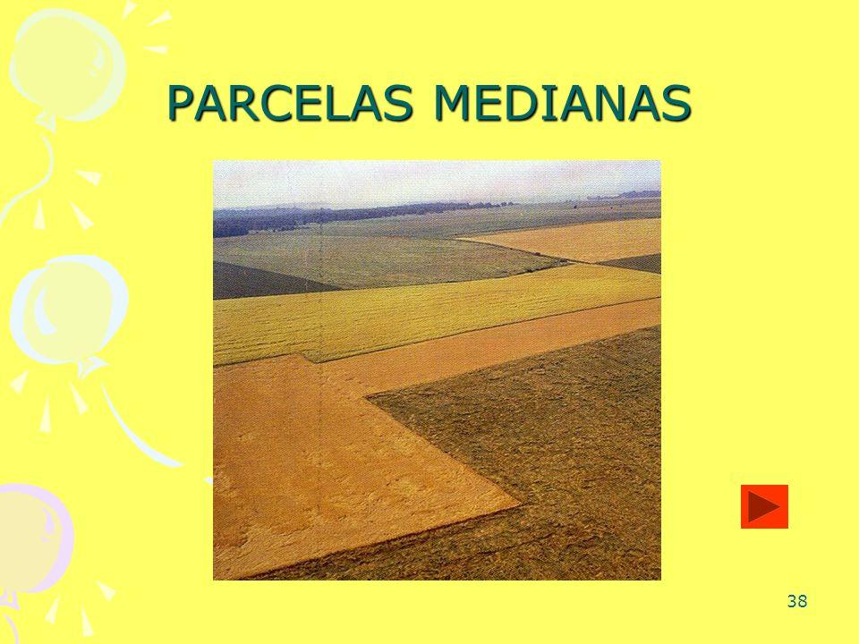 PARCELAS MEDIANAS
