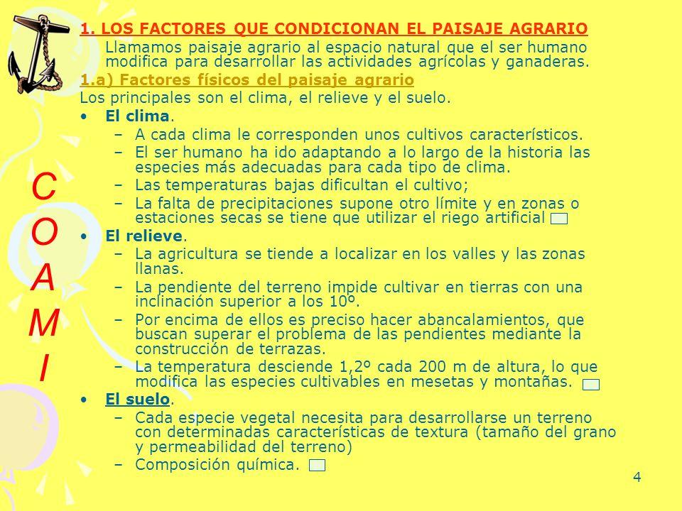 C O A M I 1. LOS FACTORES QUE CONDICIONAN EL PAISAJE AGRARIO